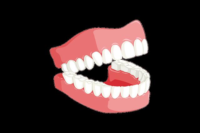 前歯のビフォーアフター模型で感動