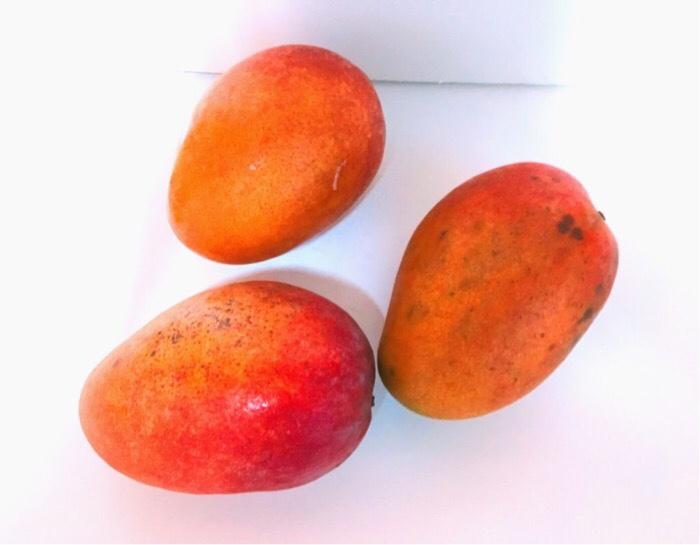 大阪府 泉佐野市へふるさと納税して届いたマンゴー