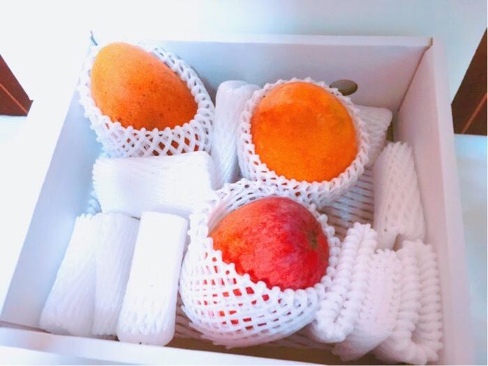大阪府 泉佐野市へふるさと納税して届いたマンゴー3玉