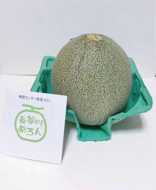 青森県 鰺ヶ沢町へふるさと納税して届いたメロン