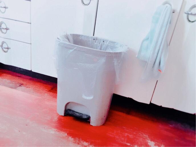 断捨離で出たゴミを処分するゴミ箱