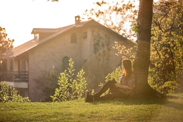 逆光で撮られた写真(木の根元に座る女性)